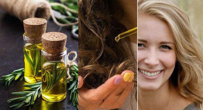 صورة فوائد زيت اكليل الجبل , الروز ماري الصديق الوفي لصحة الشعر