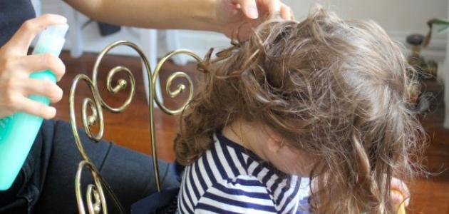 صور تسليك الشعر الملبد  , تخلصى من الشعر المعقد والمشبك