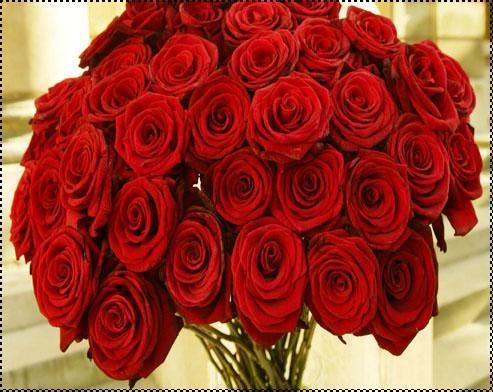 صورة صور باقات ورد لعيد الحب , احلي باقات ورد تقدم في عيد الحب