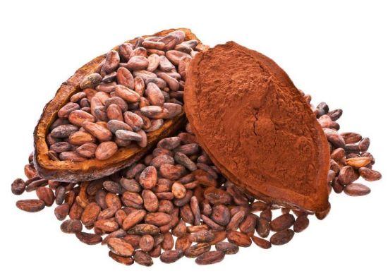 صورة ما هي فوائد الكاكاو , اهميه انواع الكاكاو وفوائده