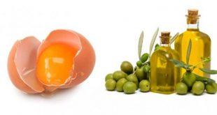 البيض وزيت الزيتون للشعر , ما هي فائدة البيض والزيت لشعرك