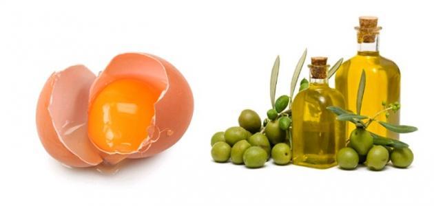صورة البيض وزيت الزيتون للشعر , ما هي فائدة البيض والزيت لشعرك