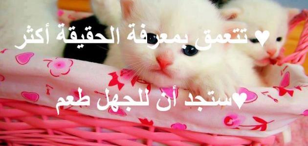 صورة كلمات عن الحياة فيس بوك , معني جمال الحياه في عبارات بصور للفيس بوك 274 8