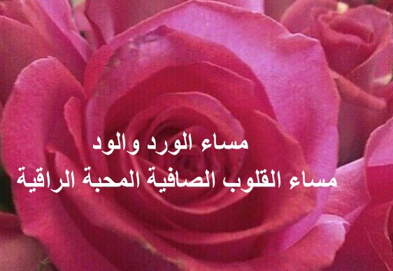 صورة مساء القلوب النقية , مساء الورد والعسل علي القلوب الصافيه 2998 9