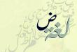 صور مقدمة جميلة عن اللغة العربية , موضوع عن لغتنا العربية