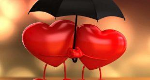 بالصور ما هي انواع الحب , تعددت الاسباب والحب واحد 5610 5 310x165