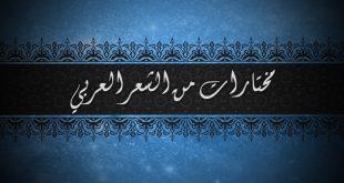 بالصور مختارات من الشعر العربي , اشعار وقصائد من الشعر العربي 6493 13 310x165