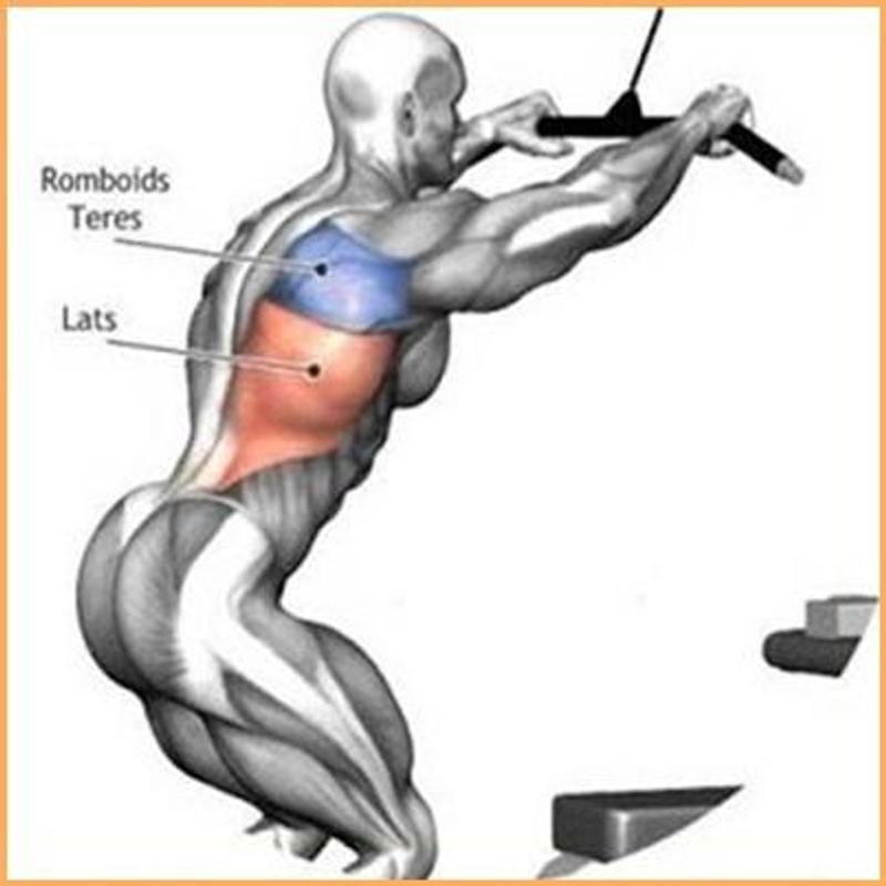 صورة عضلات الجسم وتمارينها , رياضه وتمارين تفيد جسمك