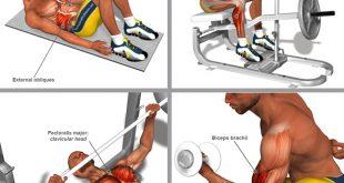 صور عضلات الجسم وتمارينها , رياضه وتمارين تفيد جسمك