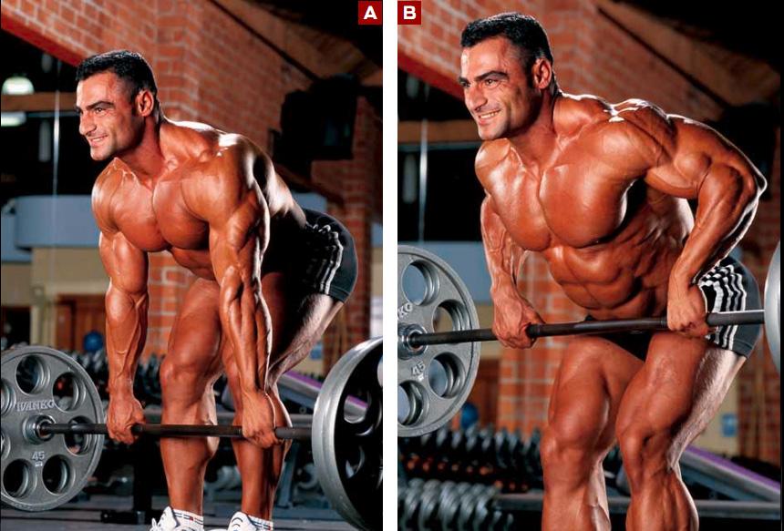 بالصور عضلات الجسم وتمارينها , رياضه وتمارين تفيد جسمك 2049 6