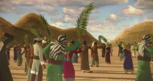 من هم الانصار والمهاجرين , من كانوا مجاورين النبى واسمائهم