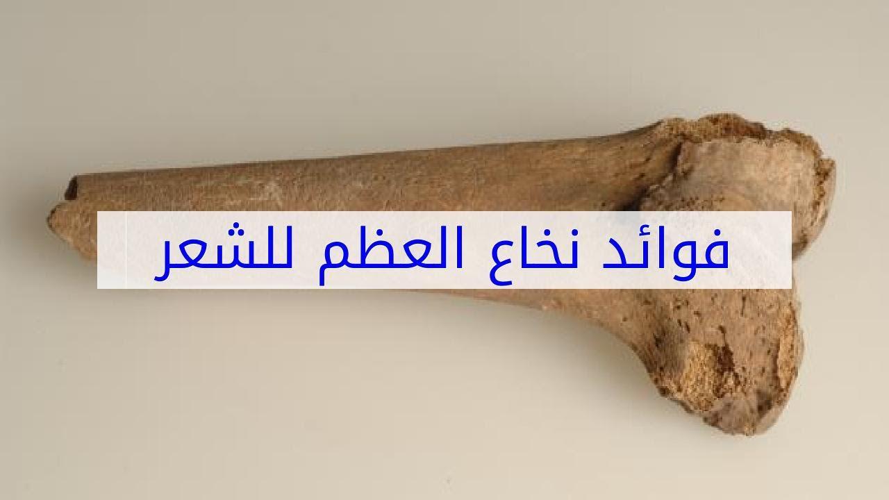صورة نخاع العظم لفرد الشعر , معجزه فرد الشعر بالنخاع العظمى