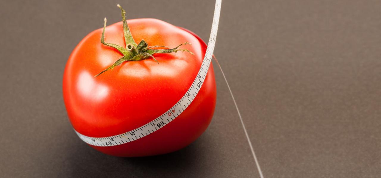 صورة هل الطماطم يزيد الوزن , ما الذى تفعله الطماطم فى جسم الانسان