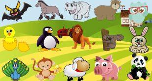 بالصور صور حيوانات كرتون , اشكال حيوانات كرتونيه 2395 11 310x165