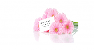 بالصور اجمل الصور ليوم المعلم , كلمه احترام توفى حق المعلم 2439 2 310x165