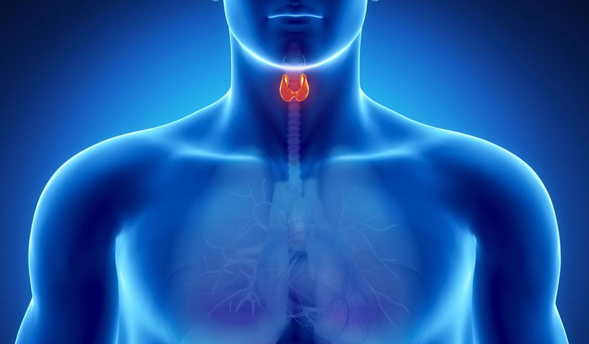 بالصور اعراض ارتفاع هرمون الغدة الدرقية tsh , اشياء تنبهك بوجود خلل فى الغده الدرقيه 2473 1