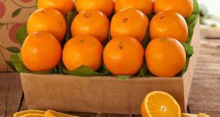 بالصور هل البرتقال يزيد الوزن , ماذا يفعل البرتقال بجسم الانسان 2518 3 310x165