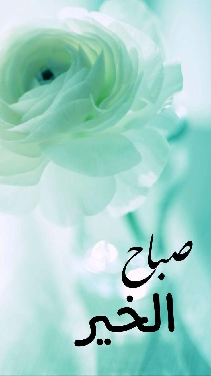 Image result for صور صباح الخير وورد , أجمل صباح لعيون حبيبك