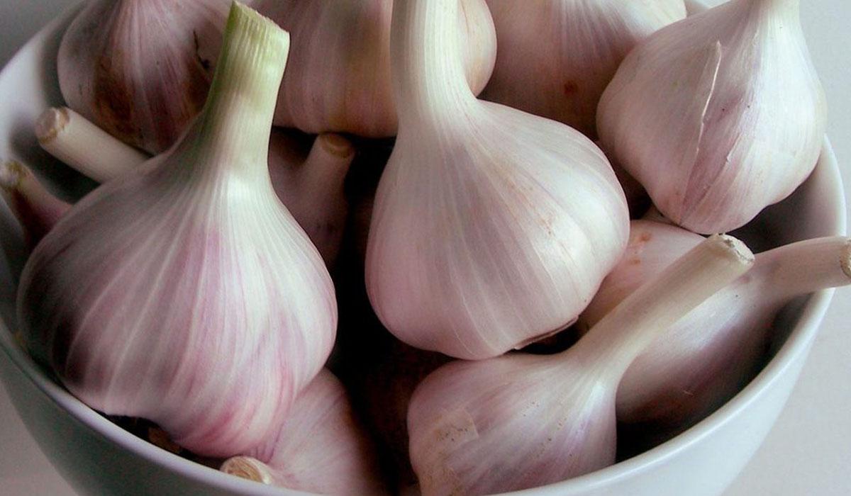 صورة فوائد الثوم للرجيم , استخدامات الثوم في التخسيس