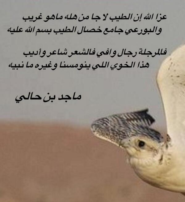 صور قصيدة مدح في الخوي الكفو , الاخ الوفي لا يوجد قصائد توفيه