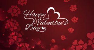 بالصور عيد حب سعيد , معلومات اول مره تعرفها عن عيد الحب السعيد بالصور 409 9 310x165