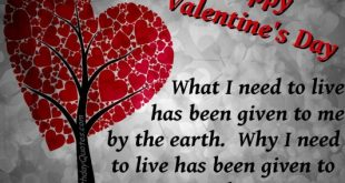 صورة تهنئة عيد الحب , كلمات تذيب الحبيب
