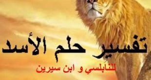 بالصور رؤية شبل الاسد في المنام , تفسير احلام رؤيه الاسد 5237 3 310x165