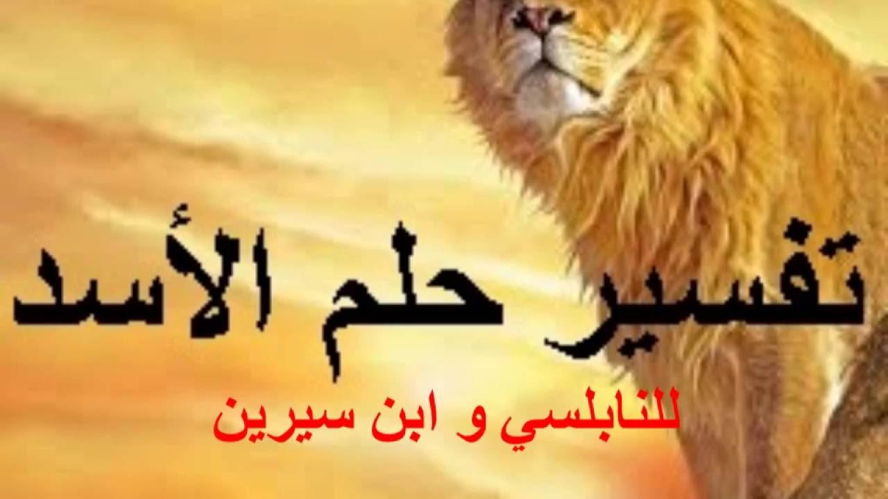صورة رؤية شبل الاسد في المنام , تفسير احلام رؤيه الاسد