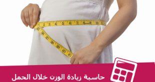بالصور حاسبة الوزن المثالي للحامل , كيف احسب الوزن المثالي اثناء الحمل 764 2 310x165