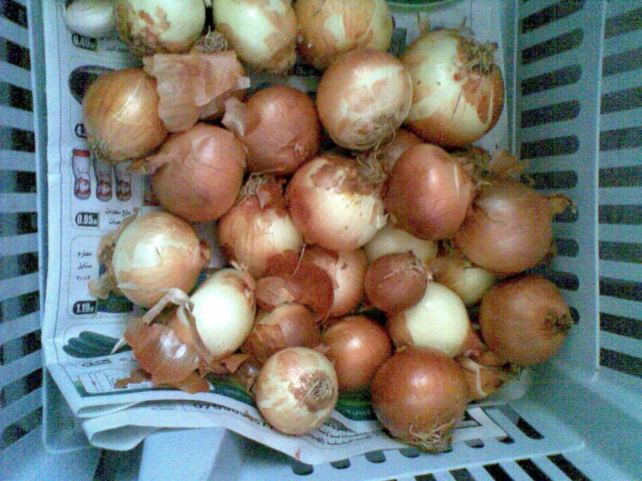 صور طريقة تخزين البصل , تعرفي على كيفية تخزين البصل