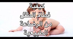 فطام الطفل من الرضاعة الطبيعية , نصائح هامة تساعدك على فطام رضيعك