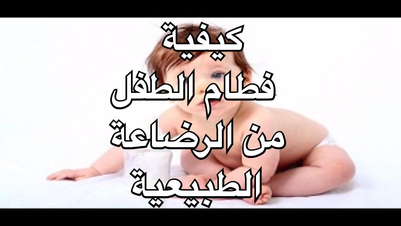 صور فطام الطفل من الرضاعة الطبيعية , نصائح هامة تساعدك على فطام رضيعك