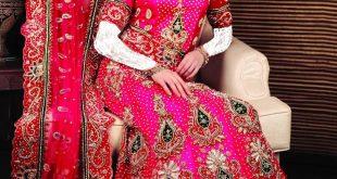 صور فساتين زفاف هندى , اشكال فساتين هنديه مناسبه للزفاف