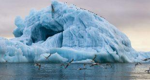 صور صور القطب الشمالي , مواصفات القطب الشمالى واين يقع
