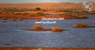 صور كلمات عن الصحراء , وصف الصحراء فى كلمتين