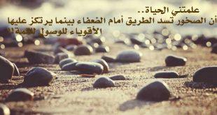 صورة قصيدة علمتني الحياة , قصيده فى حب الحياه