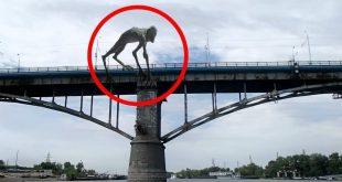 صورة مخلوقات غريبة , اغرب المخلوقات فى العالم