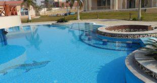 صورة تصميم حمامات السباحة , تشكيل حمامات سباحه مختلفه