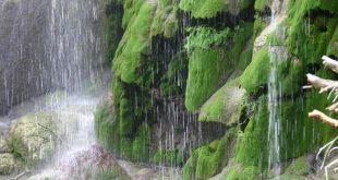 صورة صور متحركة للمطر , الامطار وروعتها فى صورة متحركه
