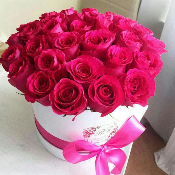 صورة صور ورود بتجنن , لعشاق الورود الجميله ادخل هنا