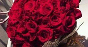 صورة صور بوكي ورد , انسب الورود لجميع المناسبات