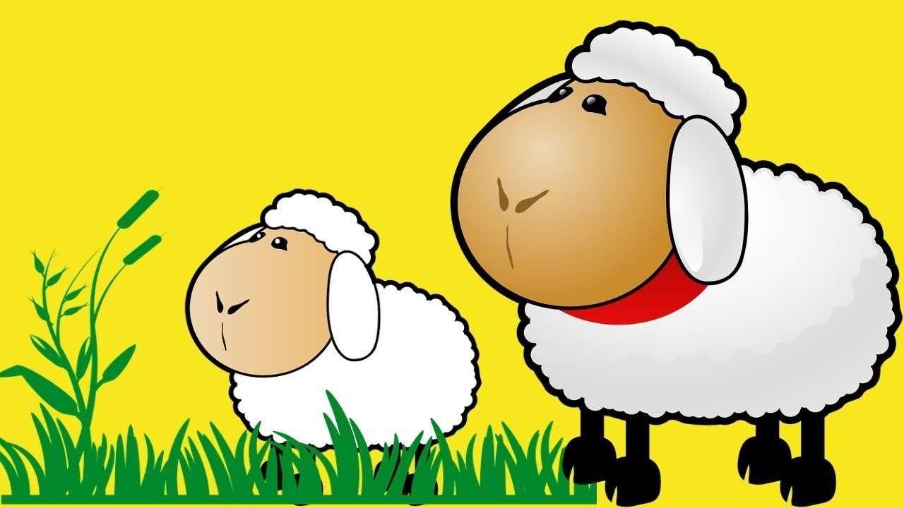 صورة ما هو عيد الاضحى , اعرف قصة عيد الاضحى