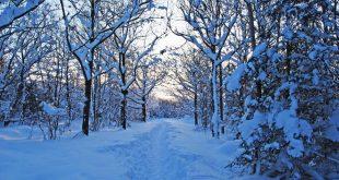 صورة صور فصل الشتاء , الشتاء والمطر وروعتها في صور تجنن