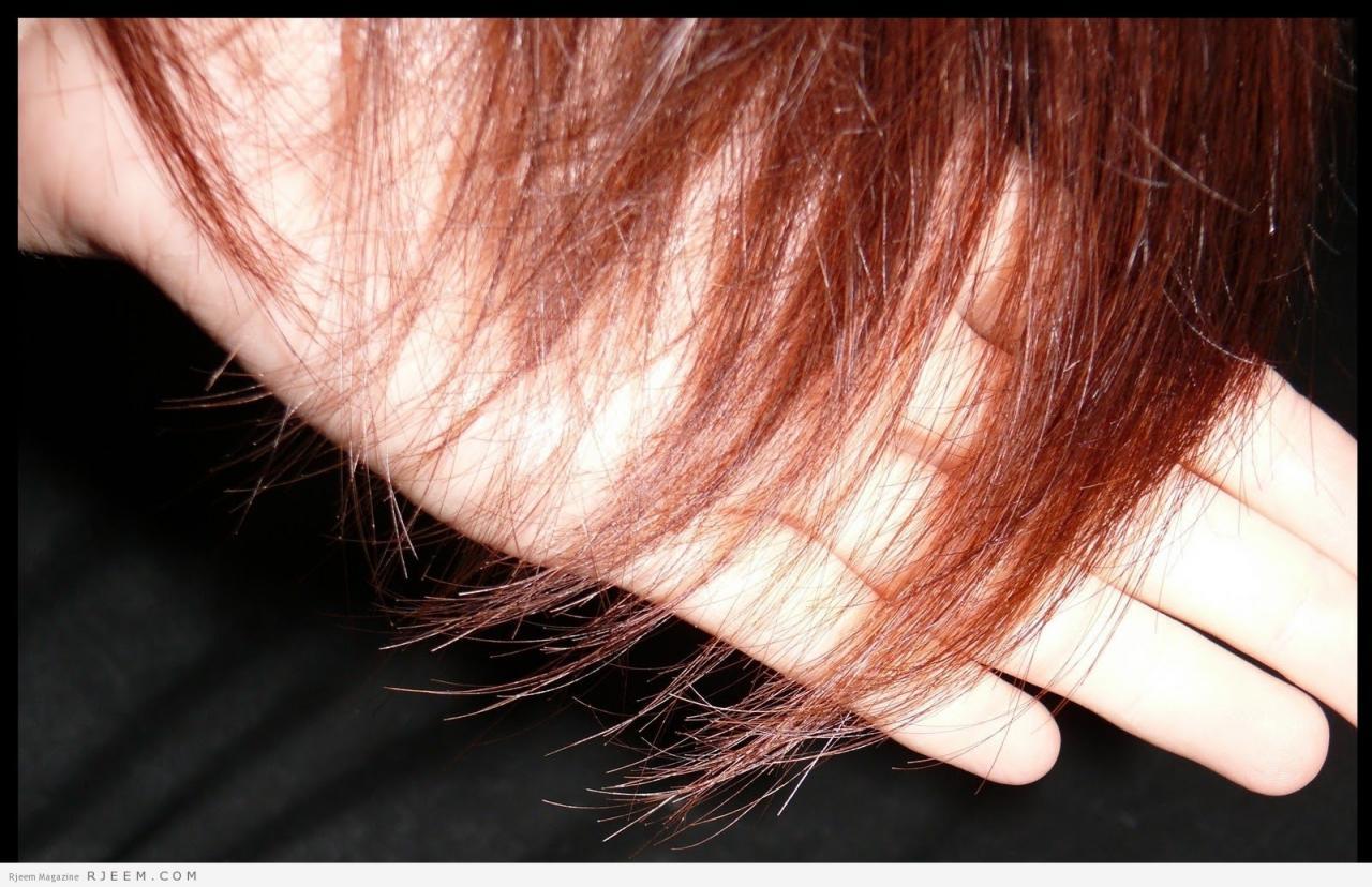 صورة علاج تقصف الشعر , طرق العناية بالشعر لحمايتة من التقصف