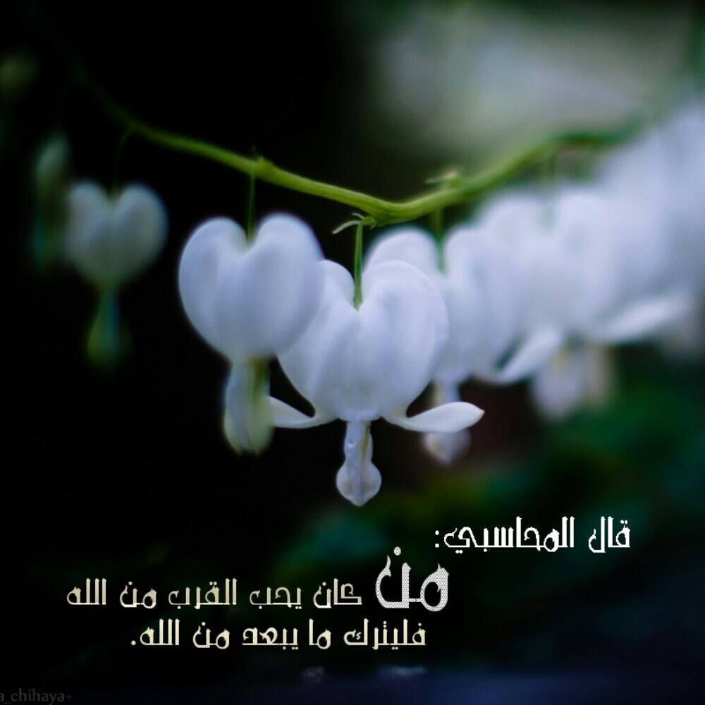 صور صور مكتوب عليها عبارات دينيه , عبارت اسلاميه يخفق لها القلب ويرتوي بها