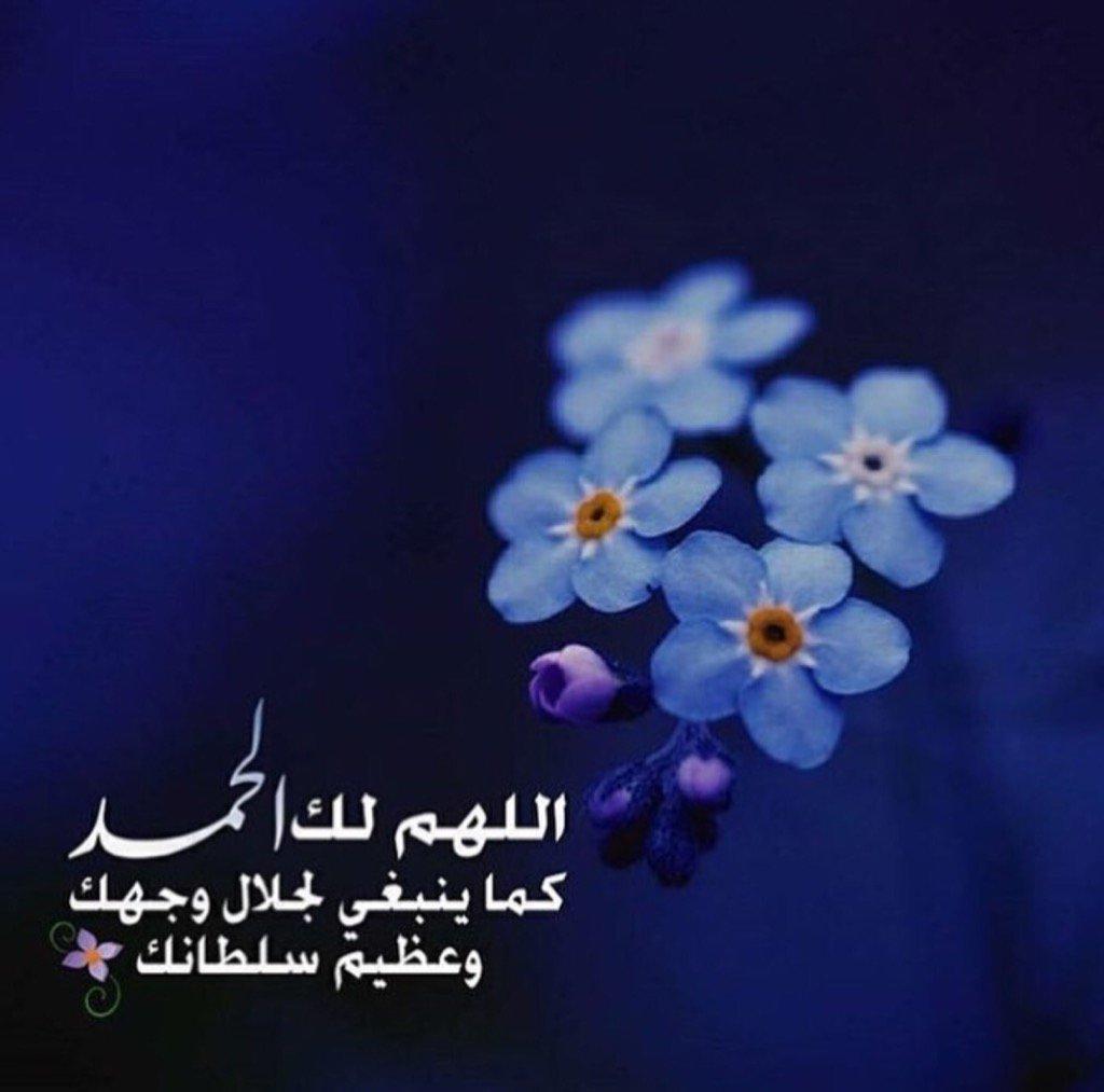 صوره دينه جميله