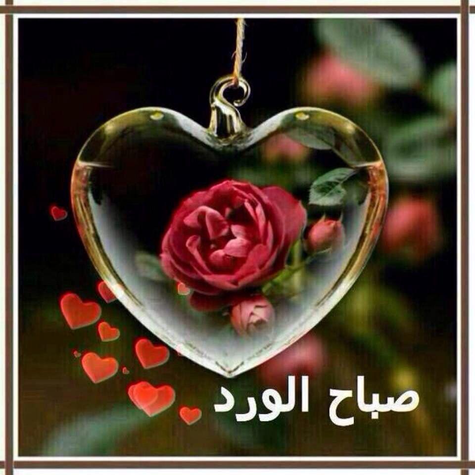 صورة صباح الخير زوجتي حبيبتي , اجمل صباح للزوجة