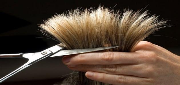 صورة معنى حلم قص الشعر , حلمت اختي بقص شعرها في الحلم