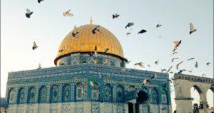 صورة مقالة عن القدس , القدس عربية رغم انف المعتدين