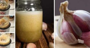 صورة فوائد الثوم الذكر مع العسل , انقاص الوزن 10 كيلو في شهر 5868 1 310x165